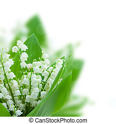 lilly of the valley posy  isolated on white background