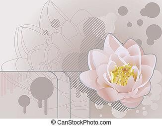 lilly, tło, ilustracja