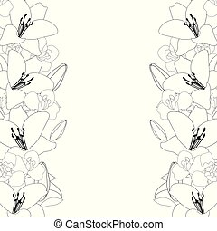 Lily and Iris Flower Outline Border on White Background