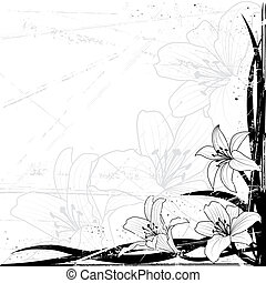 lily background - vector background with lily in black and...