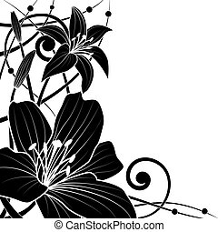 lily background - vector background of lily in black and...
