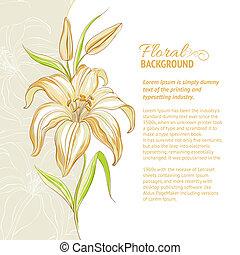 Lily flower background. Vector illustration