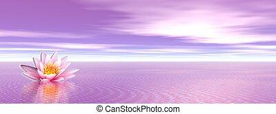 Lily flower in violet ocean - Pink lily flower in the violet...