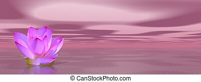 Violet lily flower in ocean to symbolize seventh chakra