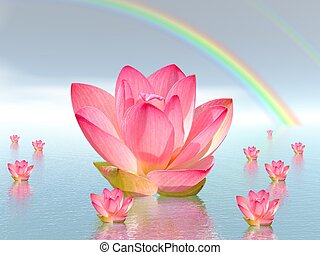 Lily flowers under rainbow