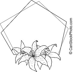 Lily frame, flowers drawing and sketch with line-art on white backgrounds.