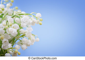 Lily of the valley on a blue background