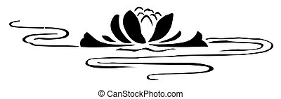 lily on the water - drawing on the water lilies in black and...