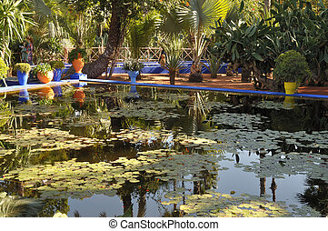 Lily pond at the Jardin Majorelle in Marrakech, Morocco