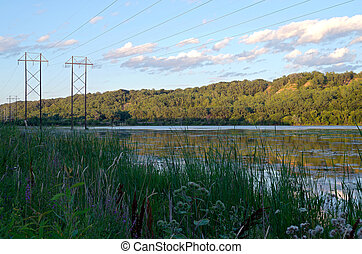 Lilydale Park and Pickerel Lake