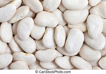 Lima Bean texture background. Large beans with a buttery flavor and starchy texture.