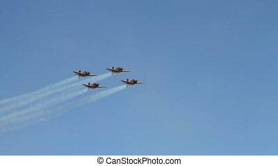 Lima Lima aerobatics team