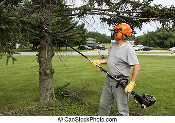 yard worker trimming trees with an extended chainsaw