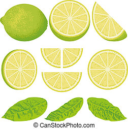 Lime - A whole lime lemon and slices at different angles,...