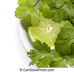 Lime and Cilantro or Coriander - Lime and cilantro or...