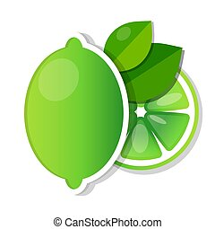 Lime fruit green with slices and leaves vector illustration
