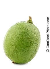 lime, frukt