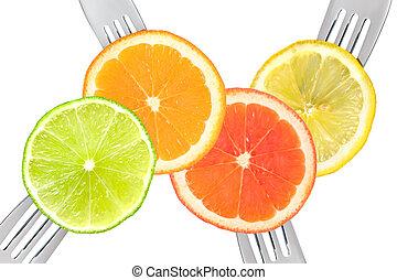 lime lemon orange and grapefruit citrus fruit