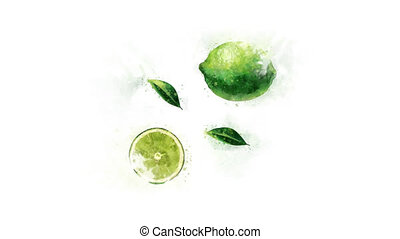 Lime painted in watercolor - The appearance of a watercolor...