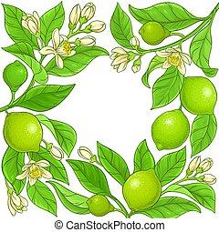 lime vector frame on white background