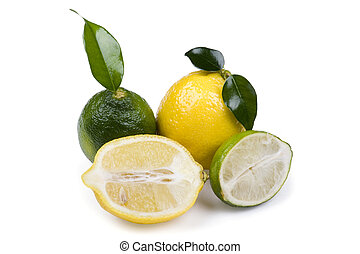 lime with lemon on white