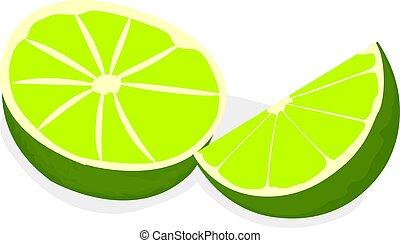 Limes vector illustration on a white background
