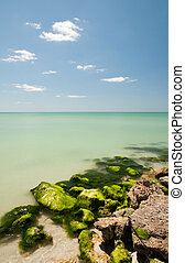 Limestone covered with seaweed at the beach on Gulf of...