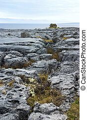 Natural rock alignment in the Burren, County Clare, Ireland