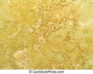 Limestone2 - Closeup of Limestone Wall for Background or...