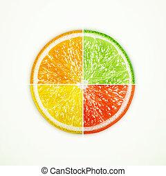 limette, orange, pampelmuse, zitrone, geviertelt