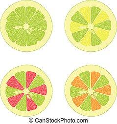 limette, zitrone, rosa grapefruit, orange