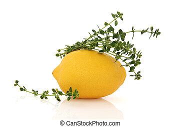 limone, frutta, e, timo, erba