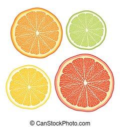 limone, pompelmo, arancia, vettore, stilizzato, bianco,...