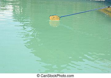 limpador, rede, piscina