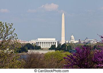 lincoln, capitole, ensoleillé, fleurir, washington dc, tard, horizon, après-midi, monument, commémoratif, redbud, jour, vue