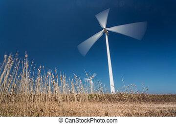 linda, generatorer, i rörelse, från, nedanför, gräs, in,...