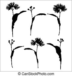 Linden flowers set background