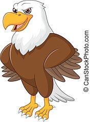lindo, águila, caricatura, posar
