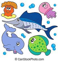 lindo, 2, animales, colección, marina