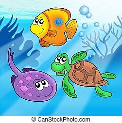 lindo, 3, animales, marina