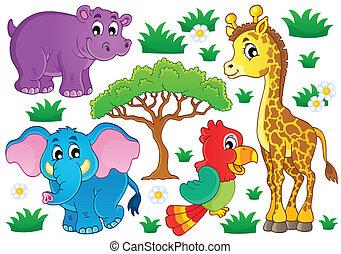 lindo, africano, animales, colección, 1