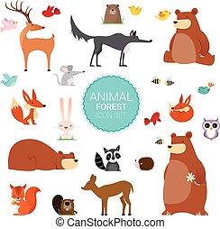 lindo, animales, creativo, salvaje, vector, bosque, ilustraciones