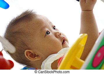 lindo, asiático, bebé bebé, juego, en, bebé, paseante