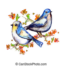 lindo, aves, para, su, design., acuarela