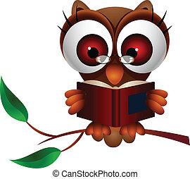 lindo, búho, libro de lectura