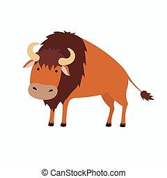 lindo, bisonte, caricatura