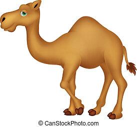 lindo, camello, caricatura, carácter