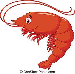 lindo, caricatura, camarón