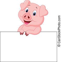 lindo, cerdo, tenencia, muestra en blanco, caricatura