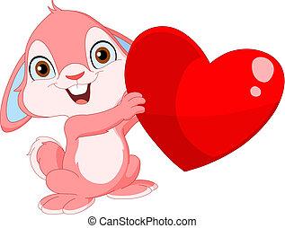 lindo, conejito, valentine